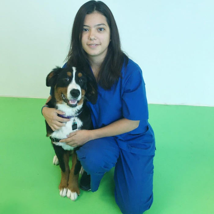 Monica  Suarez, Receptionist / Veterinary Assistant   photo